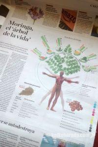 モリンガの説明@El Comercio