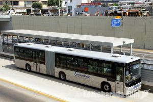 Metropolitano基幹路線図と運行表
