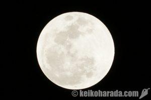 IGPプラネタリウムで27日夜皆既月食観測会開催