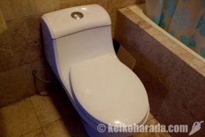 水が溢れだしたトイレ!