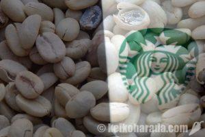 Starbucks スペイン65店舗でペルー産コーヒー販売