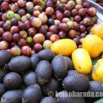 生鮮果物4月期農産物輸出を後押し