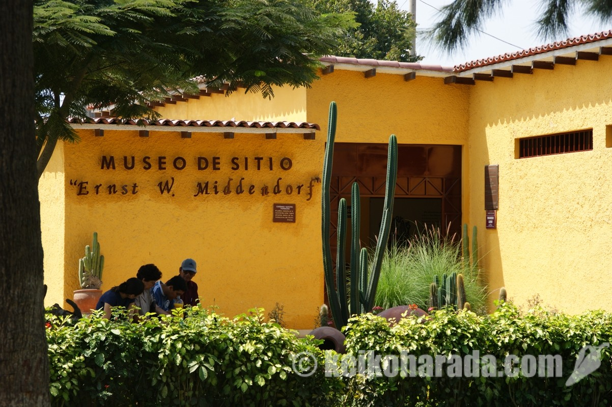 ミッデンドルフ博物館