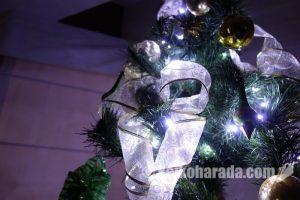 クリスマスツリー、出しました