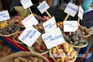 リマ首都圏5月期消費者物価0.42%下落