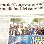 ペルー国会 医療用大麻を合法化