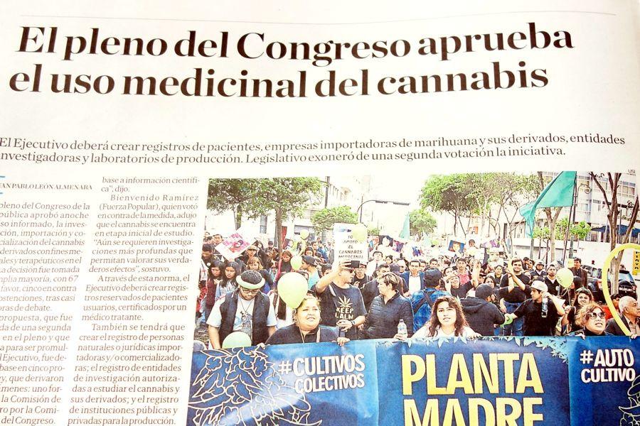 医療用大麻合法化