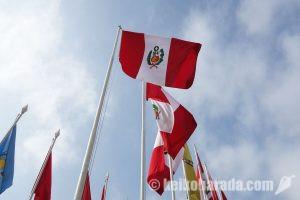 外国生まれのペルー人の子、憲法改正で成人後国籍選択が可能に