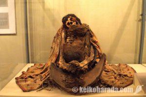 閲覧注意!ガイコツとミイラがいっぱいの「イカ地方博物館」