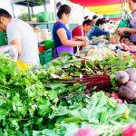 【知られざるオーガニック大国】ペルー・リマのファーマーズマーケットへ