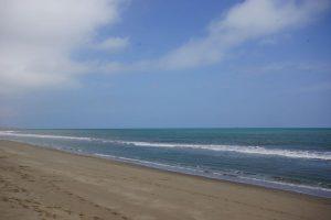 ペルー沿岸部の気温 8月はわずかに上昇か