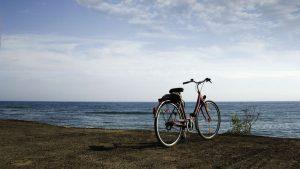 自転車通勤法制化 内閣が署名留保