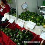 ペルーの農産物輸出 首位はアボカド