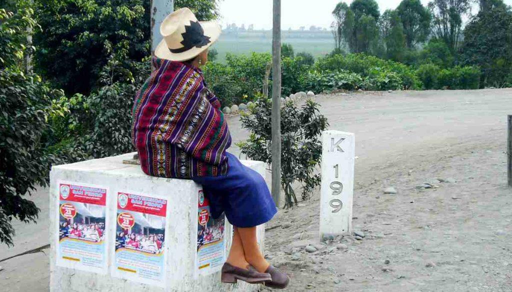 リマ地方政府 終日外出禁止再適用を検討 | keikoharada.com