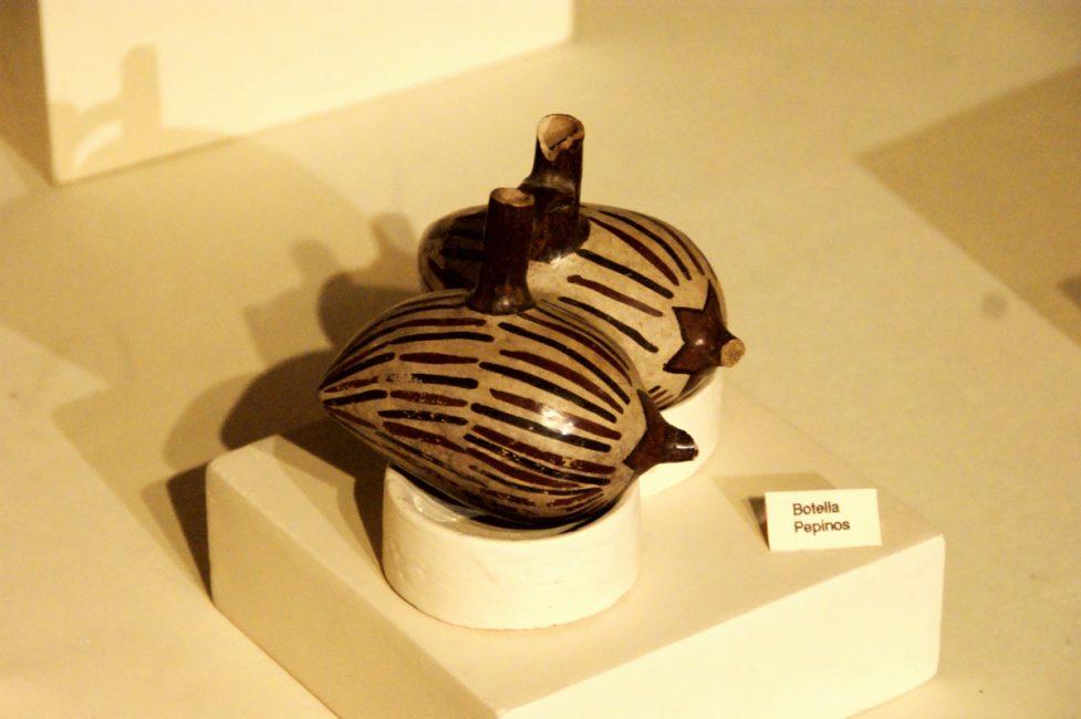 イカ博物館 胡瓜の壺