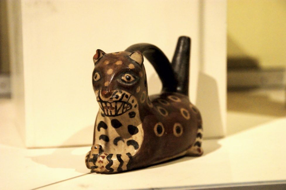 イカ博物館 ネコ科動物の容器