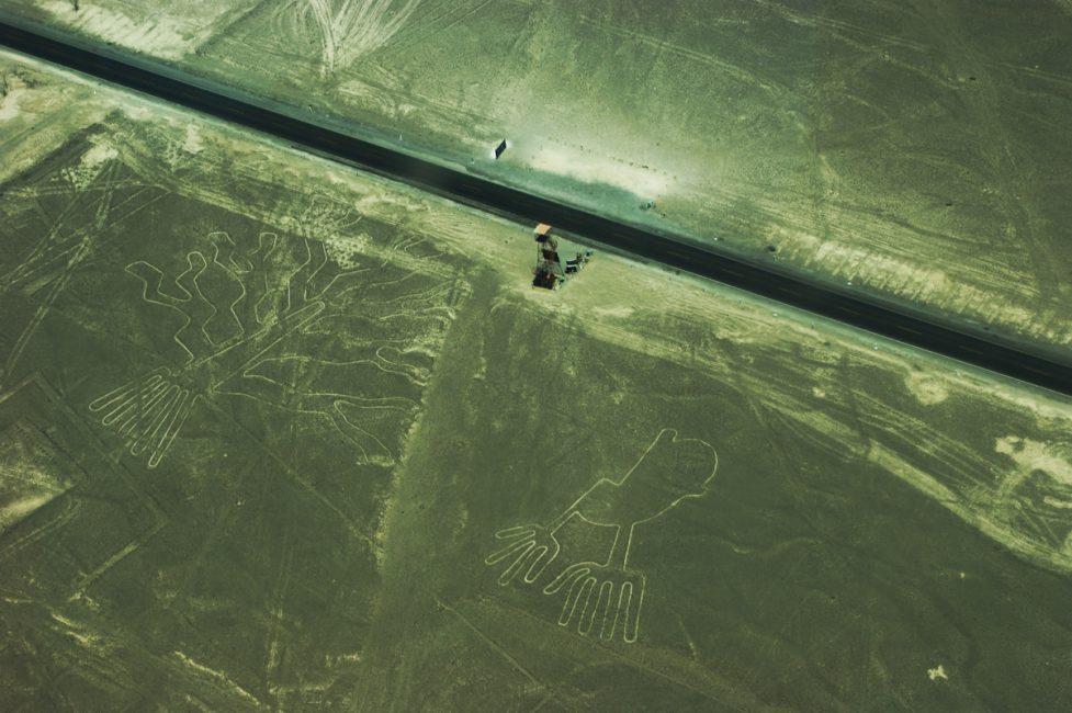 ミラドールと地上絵(トカゲ、木、両手)